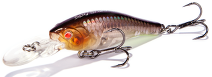 RENEGADE Spy Shad 47 SP (A122)